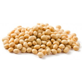Porotos de Soja orgánico x kgrs