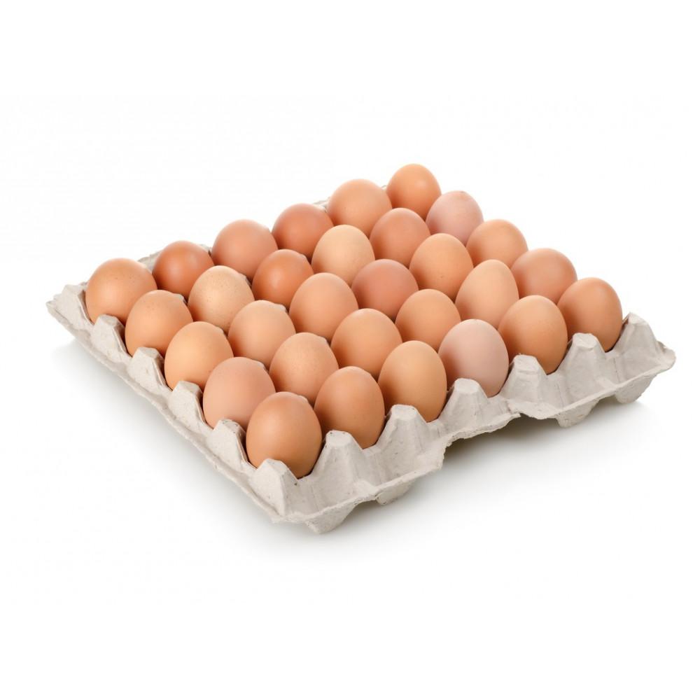 """Maple de Huevos """"Coeco""""  (30 unidades)"""